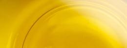 ScholleIPN olive oil